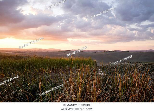 Italy, Tuscany, Siena Province, Crete Senesi, Landscape at sunset