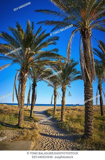 Playa El Pinar beach in Grao de Castellon of Spain at Mediterranean sea