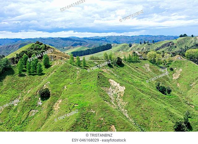 Rural scenry along the Forgotten World Highway, New Zealand