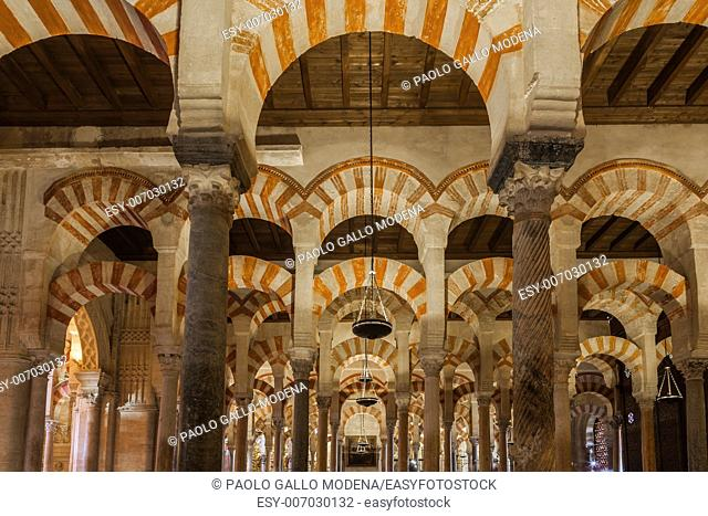 The Mosque-Cathedral of Cordoba is the most significant monument in the whole of the western Moslem World and one of the most amazing buildings in the world