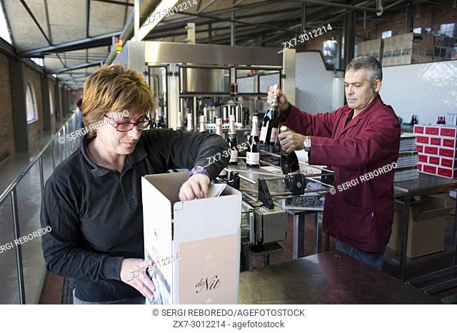 Inside Raventos winery industry. Sant Sadurni d'Anoia, San Sadurni de Noya. Winery building. Catalonia Spain