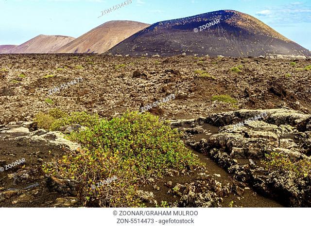 Volcanic Landscape Lanzarote Canary Islands