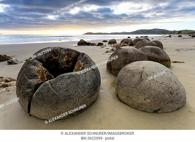 Moeraki Boulders on the beach in the early morning, Moeraki Beach, Hampden, Otago Region, New Zealand