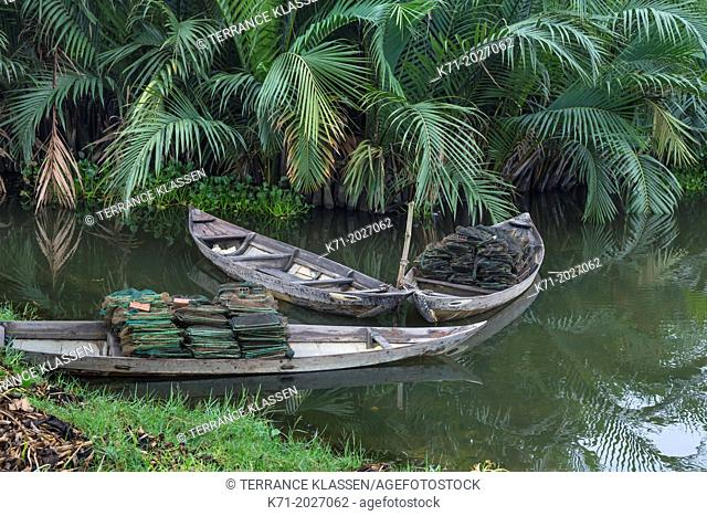 Old fishing boats in a jungle creek near Hoi An, Vietnam, Asia