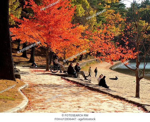 Concord, MA, Massachusetts, Walden Pond State Reservation, Henry David Thoreau