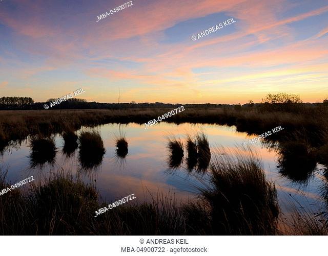 Germany, North Rhine-Westphalia, Lübbecke, big peat bog or Hiller Moor, moor pond before sunrise