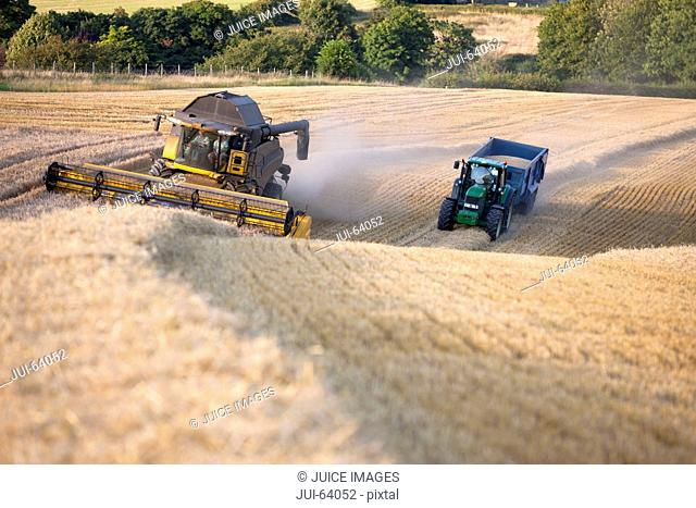 Combine harvester with tractor and trailer, harvesting wheat, in sunny rural field