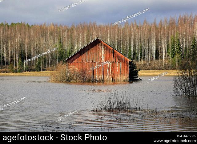 Nummi, Lohja, Finland. February 23, 2020. Flooded barn in field near Highway 110, South of Finland. Hämjoki river is flooding due to high rainfall and storms