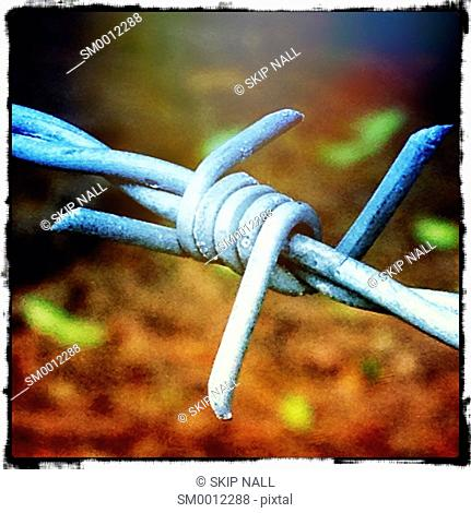 Closeup on a barbed wire in the country