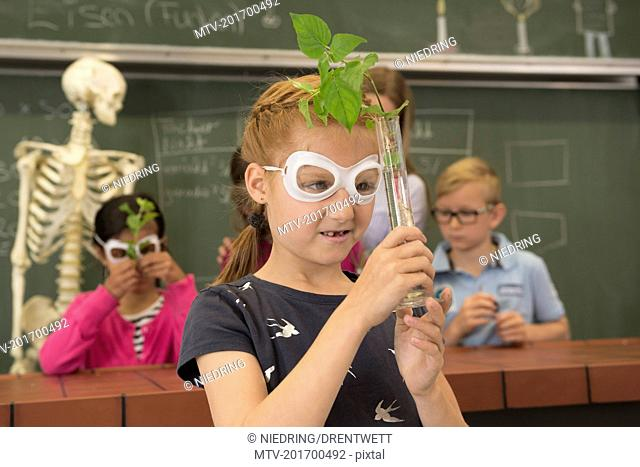 School children with teacher doing experiment in biology class, Fürstenfeldbruck, Bavaria, Germany