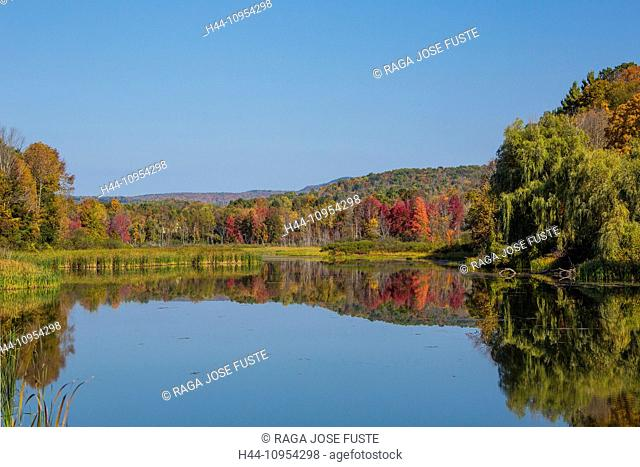 Autumn, Berkshire, Massachusetts, Shakers Pond, USA, United States, America, colourful, district, lake, nature, peaceful, red, reflection, touristic, travel