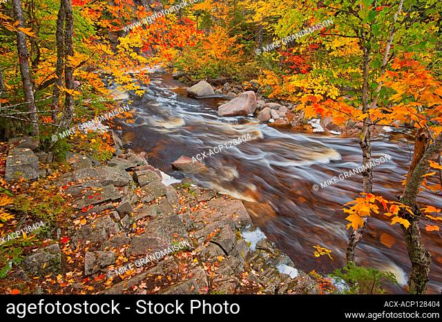 Mary-Anne Falls in the Acadian forest in autumn foliage Cape Breton Highlands National Park Nova Scotia Canada