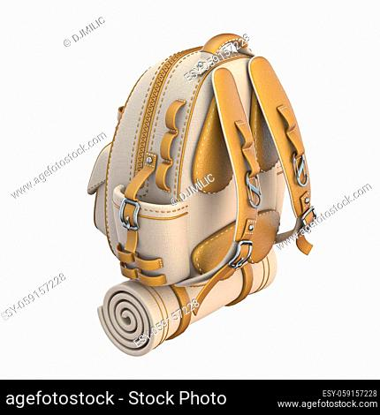Canvas and leather backpack Back side view 3D render illustration isolated on white background