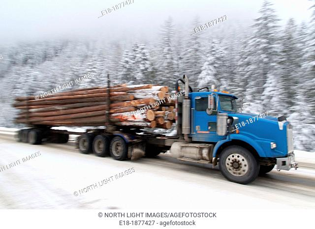 Canada, BC, Kootenays  Logging truck traveling on snowy road on the Crowsnest Highway, BC Hwy 3 in the Monashee Mountains, southern interior of the province