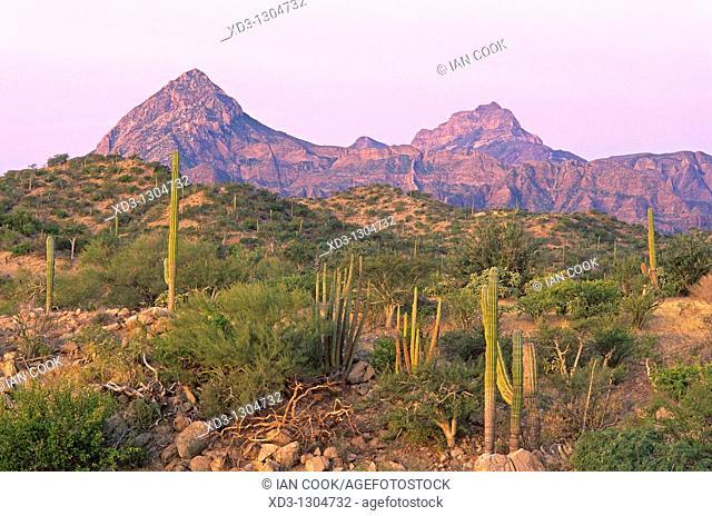 Sierra de la Giganta near Loreto, Baja California Sur, Mexico