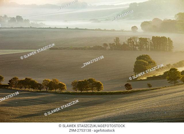 Misty autumn sunrise in South Downs National Park, East Sussex, England
