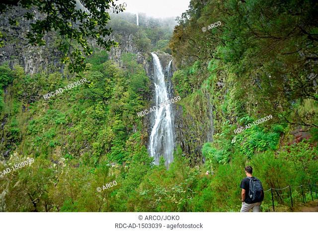 Risco Wasserfall, Rabacal-Tal, Zentralgebirge, Madeira, Portugal