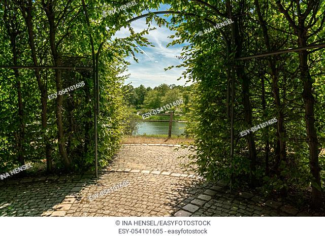 green arbour of beech branches and leaves with view onto a scenic lake landscape