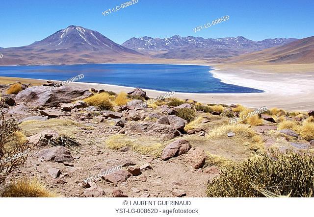 Laguna Miscanti, Los Flamencos Reserve National, Salar do Atacama, Atacama Desert, Region de Antofagasta, Santiago, Chile