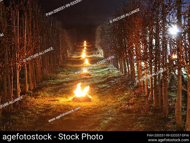 31 March 2020, Bavaria, Lindau: With fires, farmers in an orchard on Lake Constance try to raise the temperature at night between the fruit trees