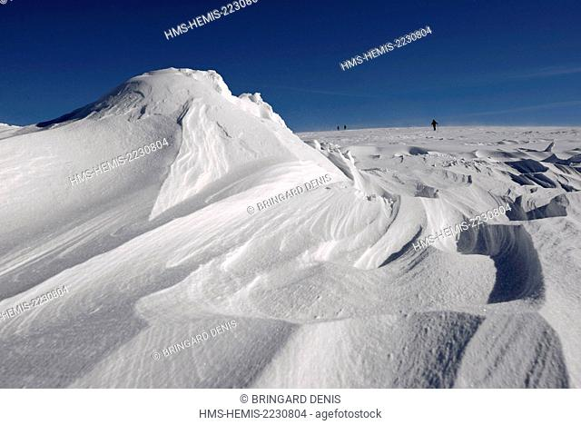 France, Haut Rhin, Hautes Vosges, Le Hohneck, skier hiking, snow blown, snowdrifts
