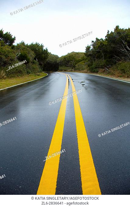 Wet tarmac surface and yellow barrier lines in the middle of the road