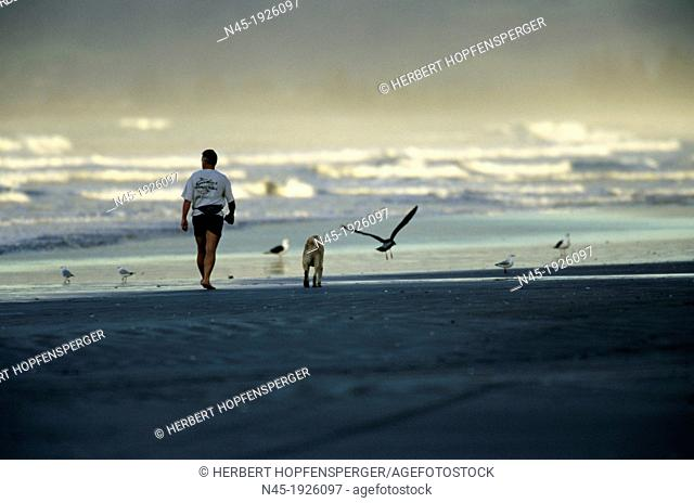 Ohope Beach; Man is Walking with his Dog on the Beach; New Zealand