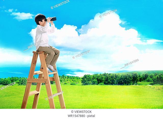 Boy sitting on top of ladder