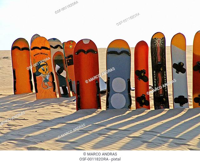 different kinds of boards to practice sandboard