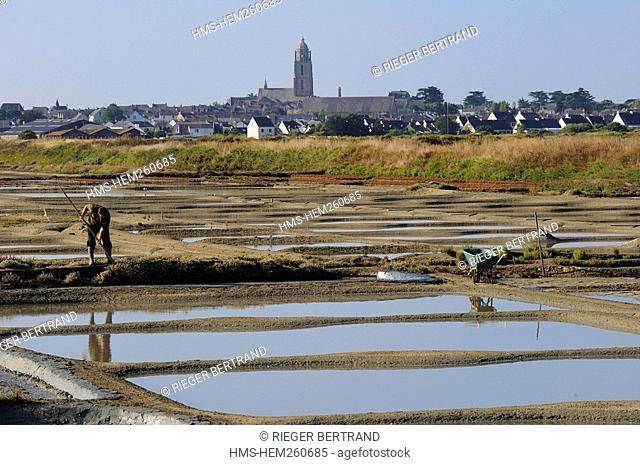 France, Loire Atlantique, Presqu'ile de Guerande, Batz sur Mer, salt marshes