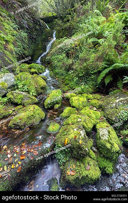 Urbión river small waterfalls, Sierra Demanda, Burgos, Spain