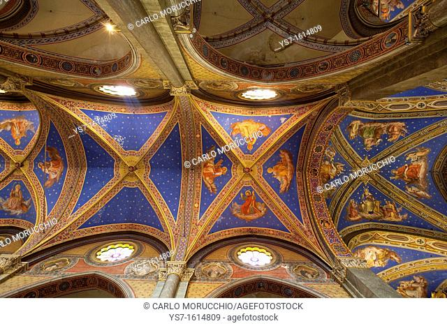 The ceiling of the Basilica of Saint Mary Above Minerva, Rome, Lazio, Italy, Europe