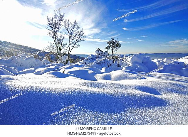 France, Vaucluse, Luberon, Mourre Negre under the snow, above Lourmarin