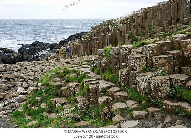 Hexagonal columns at Giant's Causeway, County Antrim, Northern Ireland, UK
