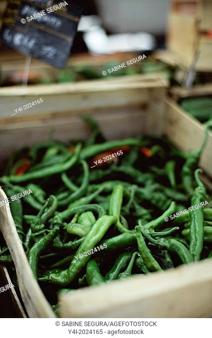 Green chillies. Market in Bordeaux. Gironde. Aquitaine. France. Europe