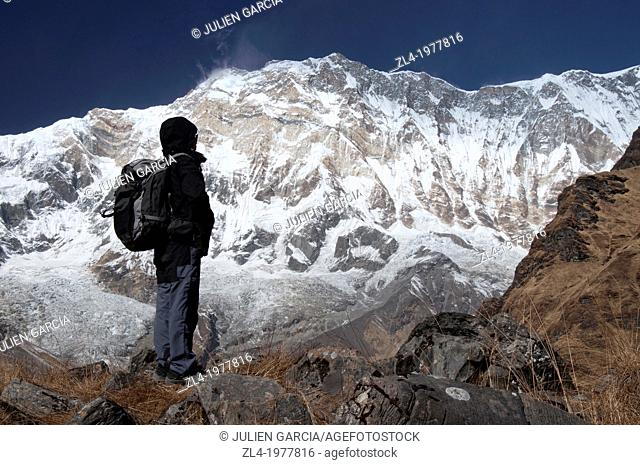 Trekker watching Annapurna 1, 8091m, from the base camp. Nepal, Gandaki, Annapurna, Annapurna Base Camp. Model Released