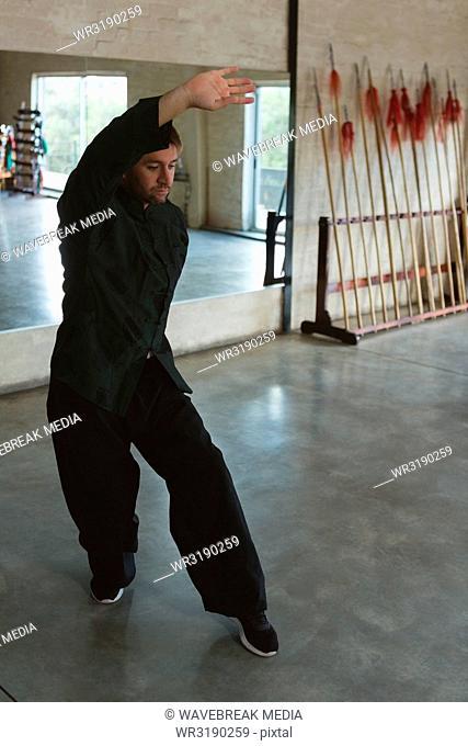 Man practicing kung fu