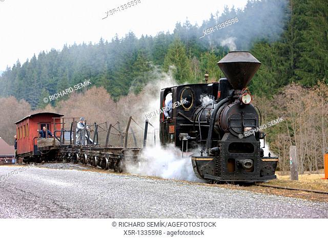 steam train, Ciernohronska Railway, Slovakia
