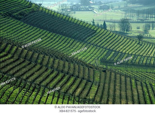 Moasca, Montferrat, Piedmont, Italy