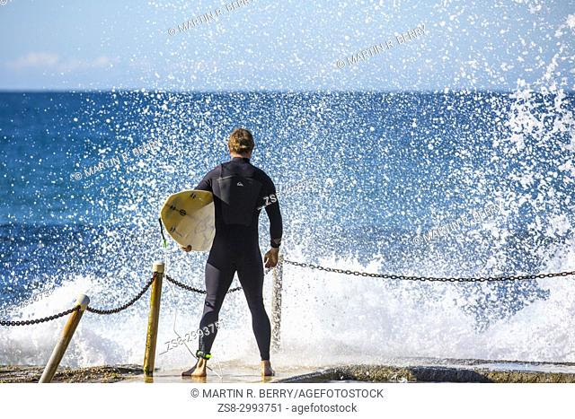 Surfing on Avalon beach on the east coast of Sydney, rear view of male man surfer with surfboard and wearing a wetsuit