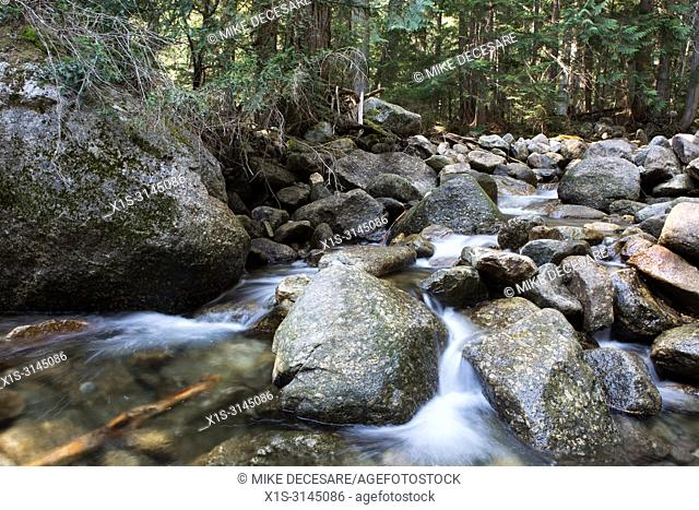 Kokanee Creek in British Columbia, Canada, winds its way over and around boulders in the stream bed