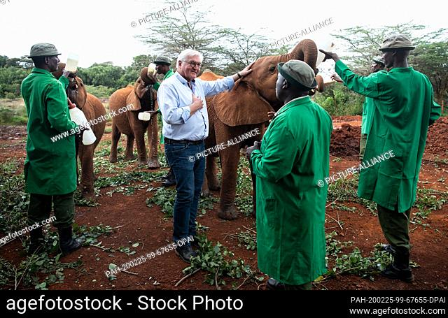 25 February 2020, Kenya, Nairobi: Federal President Frank-Walter Steinmeier (M) visits the David Sheldrick Wildlife Trust elephant orphanage in Nairobi National...