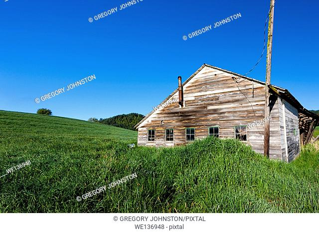 An old shed sits by a grassy hill near Tensed, Idaho