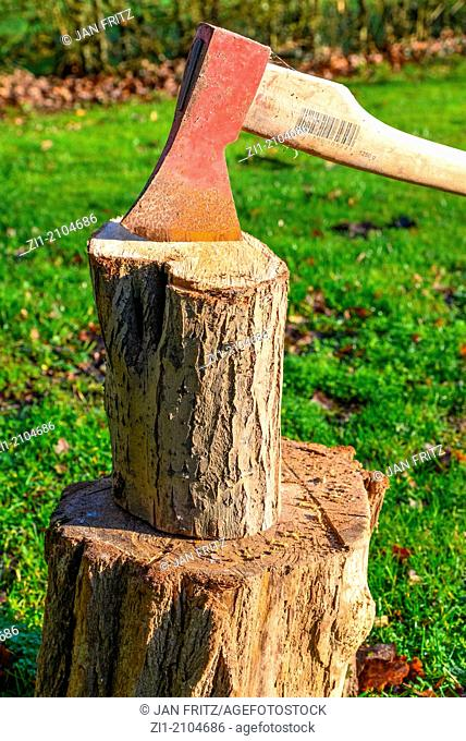 close up of axe in log