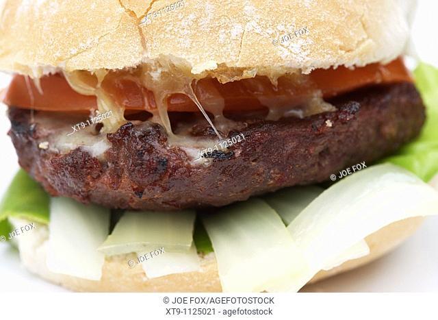 home made hamburger bap onion lettuce tomato cheese