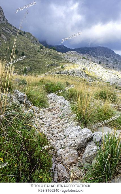 Cami des Cingles, - cami des Binis -, Paraje natural de la Serra de Tramuntana, Mallorca, balearic islands, Spain