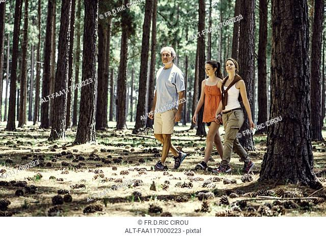 Family hiking in forest
