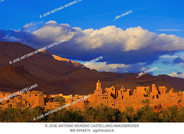 Old Kasbah, oasis, evening light, Tinerhir, Tineghir, Tinghi, Todra valley, Todra Gorges, Morocco