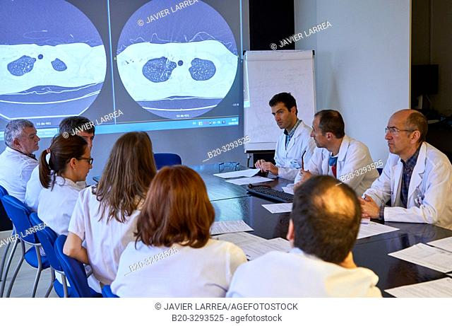 Committee of Tumors, Oncology, clinical session, Hospital Donostia, San Sebastian, Gipuzkoa, Basque Country, Spain