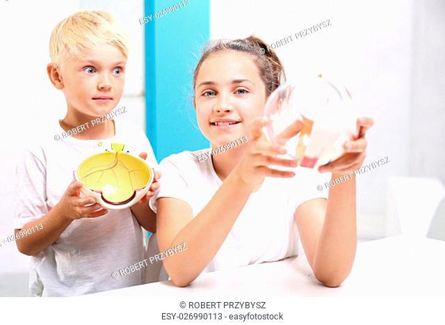 Jak zbudowane jest oko? Dzieci ogladaja model oka w laboratorium szkolnym